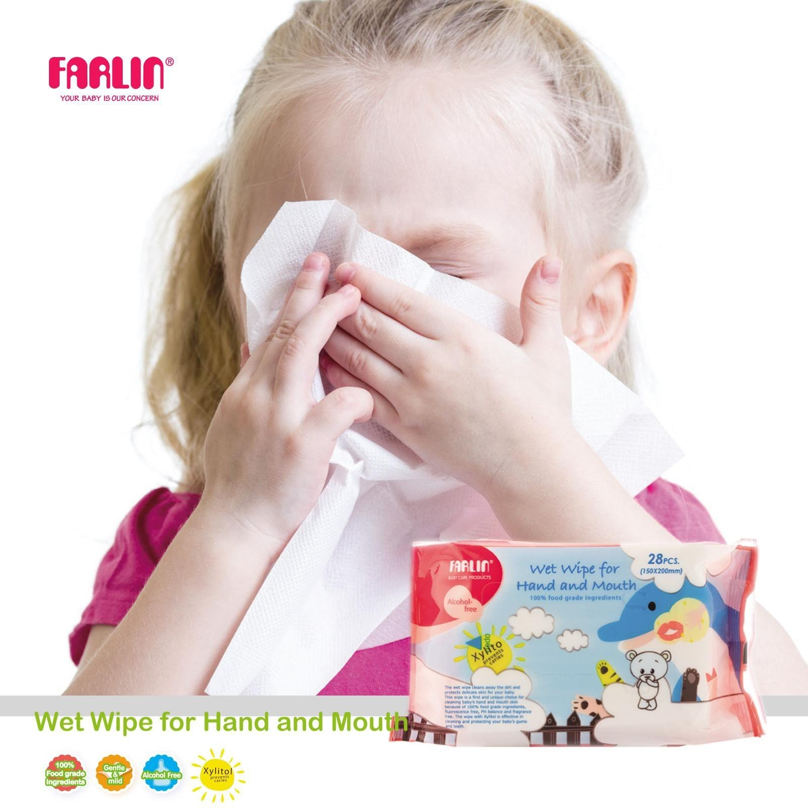 Farlin Wet Wipes for Hand & Mouth - 12 packs